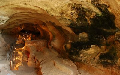 Visit the Ghar Dalam Cave and its Museum for free this Sunday!